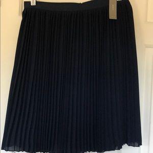 Navy Blue Jcrew Skirt